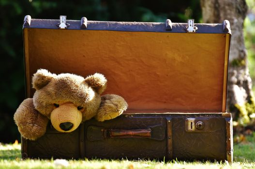 Photo free antique, toy, teddy bear
