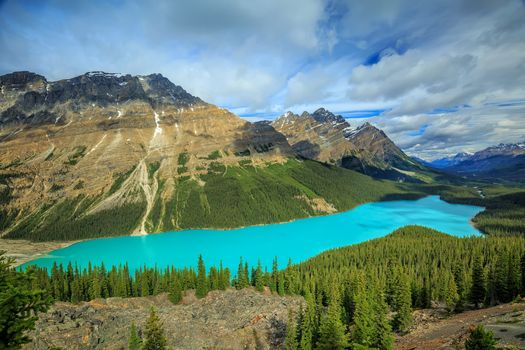 Photo free Banff National Park, landscape, forest