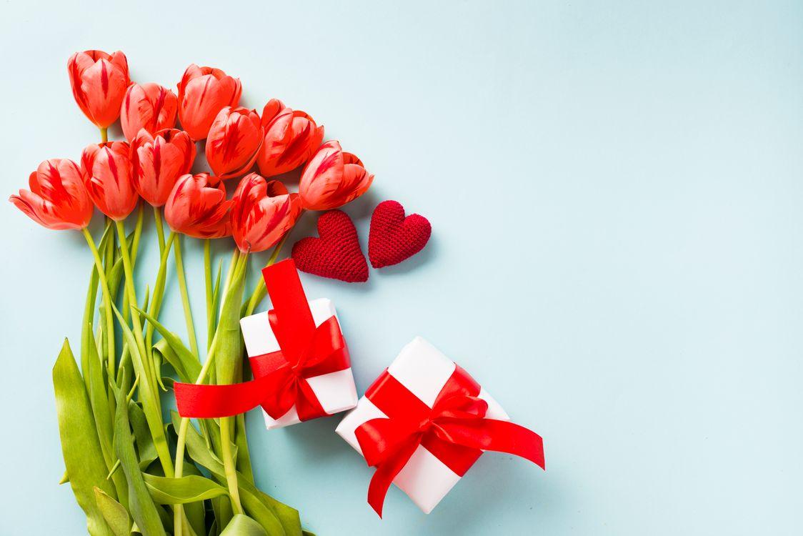 Тюльпаны · бесплатное фото