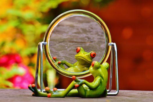 Photo free mirroring, mirror image, funny