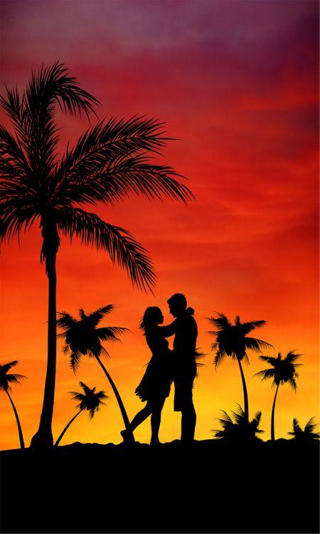 Пальмы и любовь · бесплатное фото