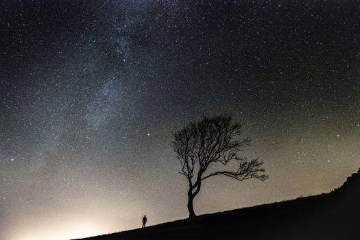 Photo free tree, silhouette, sky