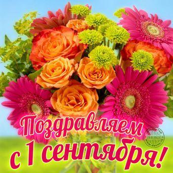 Postcard free bouquet, flowers, inscription
