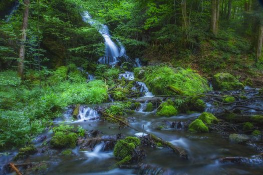 Заставки лес, деревья, речка