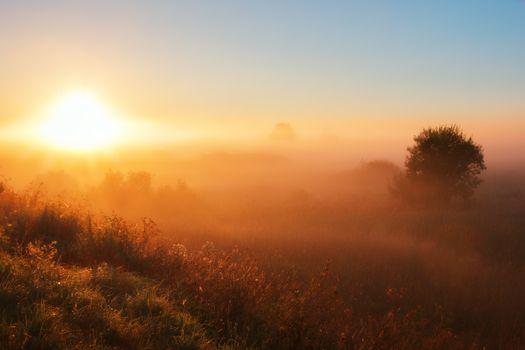 Фото бесплатно туман, рассвет, закат