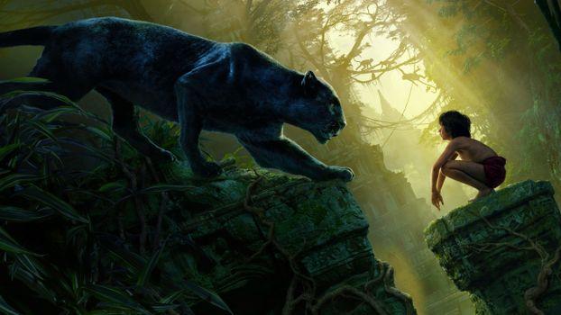Photo free the jungle book, panther, Baguera