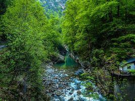 Бесплатные фото лес,деревья,скалы,речка,камни,пейзаж