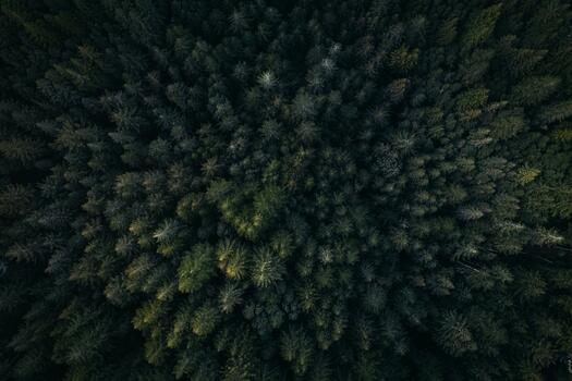 Photo free aerial photography, cool photo, darkness
