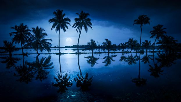 Photo free Alappuzha, India, night