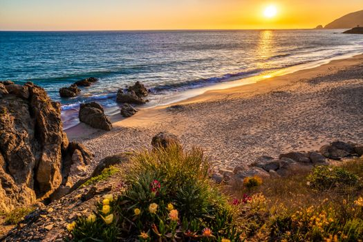 Photo free sunrise and sunset, nature, coast