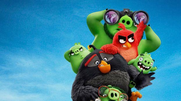 Фото бесплатно сердитые птицы, The Angry Birds 2, мультфильмы
