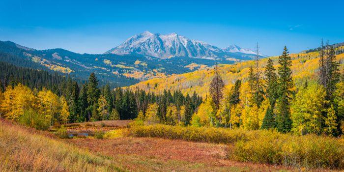 Фото бесплатно пейзаж, осень, горные деревья