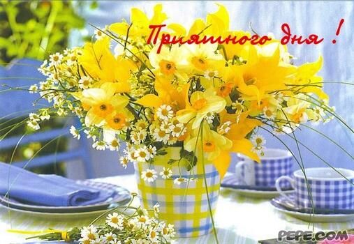 Postcard free good morning spring cards, flowers, yellow flowers