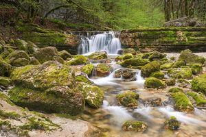 Бесплатные фото водопад,лес,деревья,скалы,природа