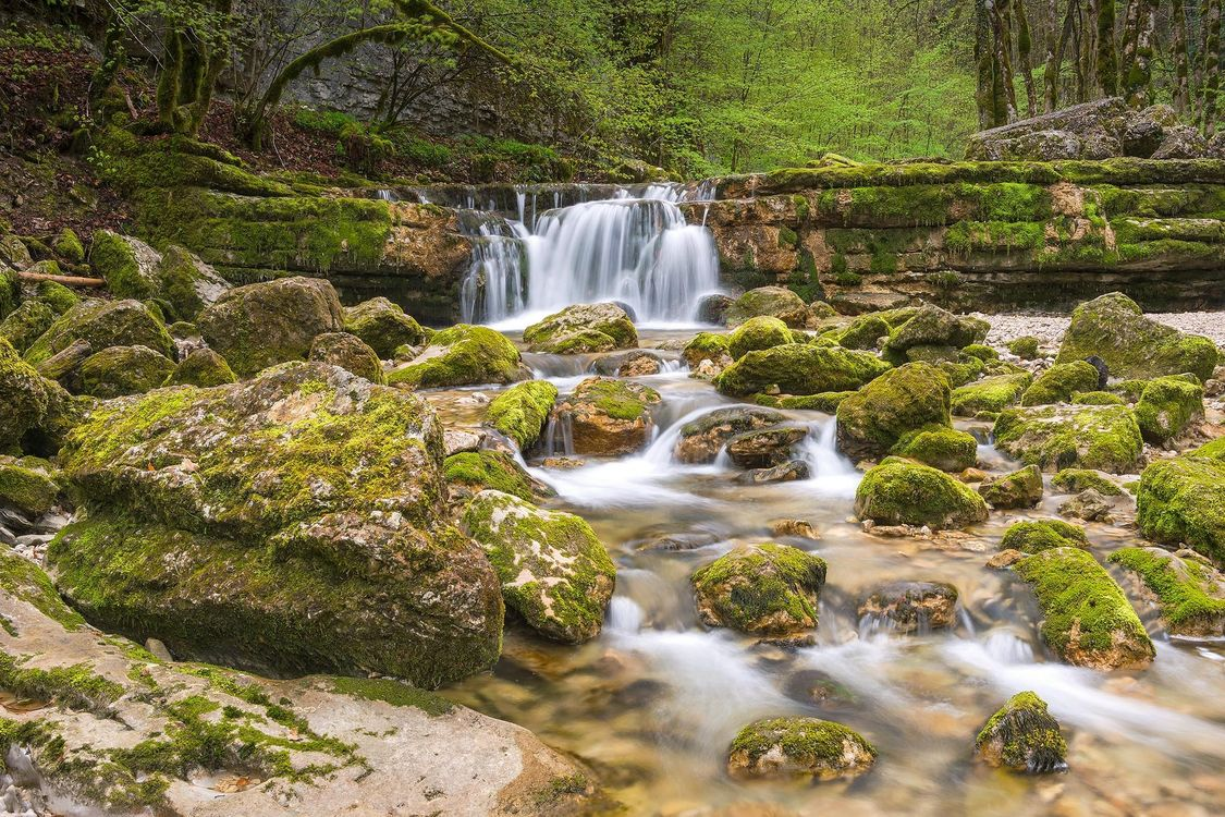 Обои водопад, лес, деревья, скалы, природа на телефон   картинки природа