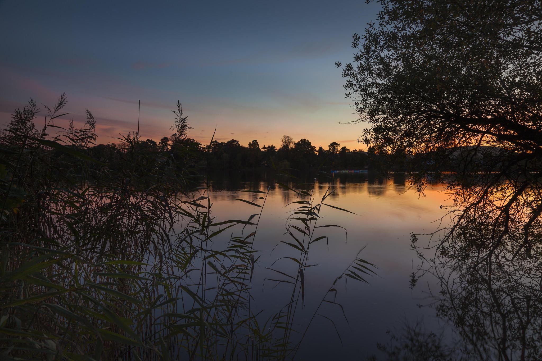 Обои озеро, закат, деревья, пейзаж