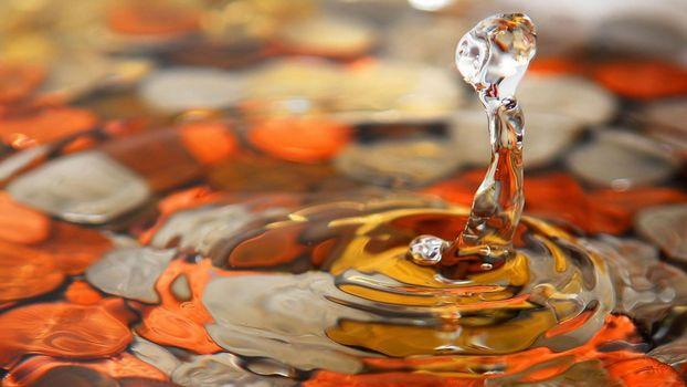 Фото бесплатно капли воды, брызги, макро