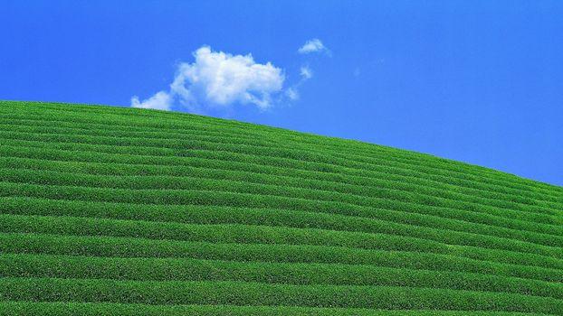 Photo free green field, sky, field