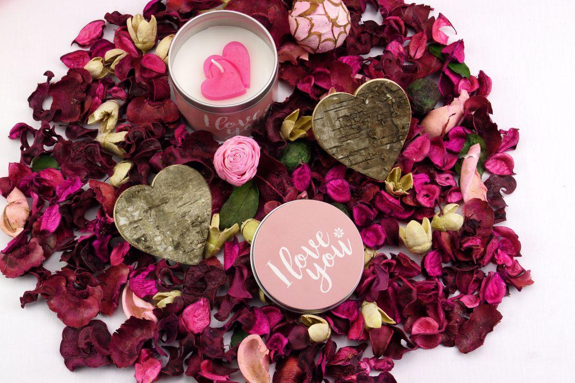 Обои свеча, лепестки роз, любовь картинки на телефон