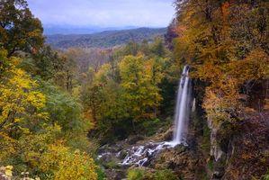 Бесплатные фото США,Штат Вирджиния,осень,лес,деревья,водопад,пейзаж