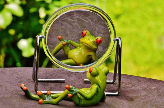 Photo free green, frog, mirror