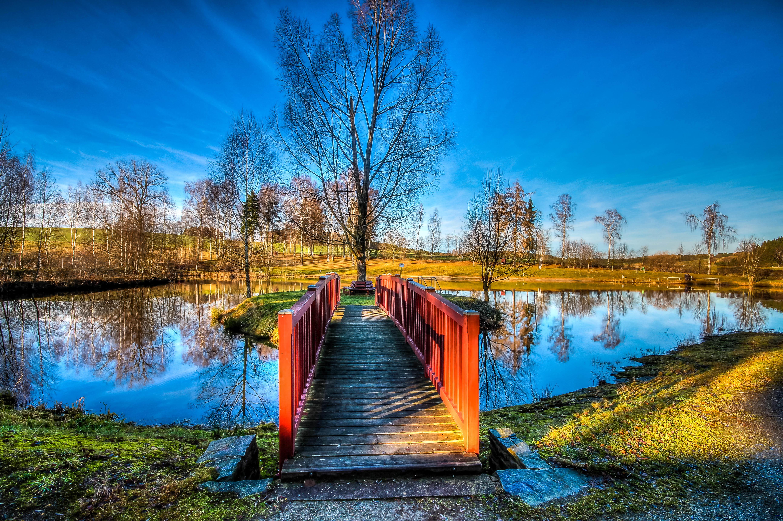 Обои озеро, осень, деревья, мост