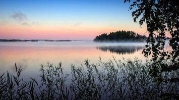 Фото бесплатно туман, утро, озеро