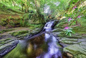 Бесплатные фото Миллтаун,Страбэйн,графство Тирон,Северная Ирландия,река,водопад,скалы