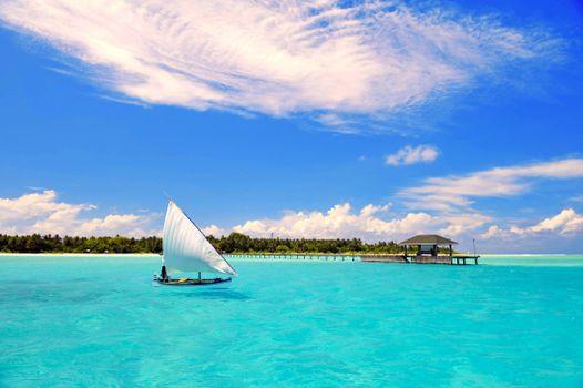 Бесплатно тропики, море - фото новые
