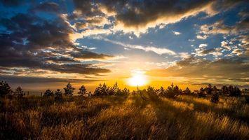Заставки закат, поле, деревья, небо, облака, пейзаж