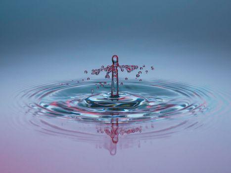 Бесплатные фото жидкость,вода,капля,макро