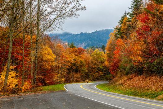 Заставки дорога, Смоки Национальный парк, штат Теннесси