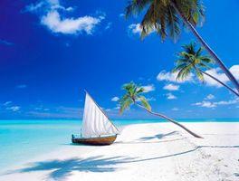 Бесплатные фото море,песок,пляж,лодка,пальмы,остров,тропики