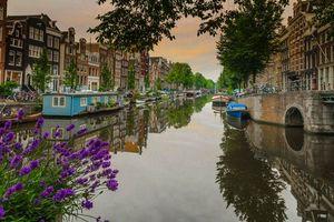 Бесплатные фото Amsterdam,Нидерланды,Амстердам,канал