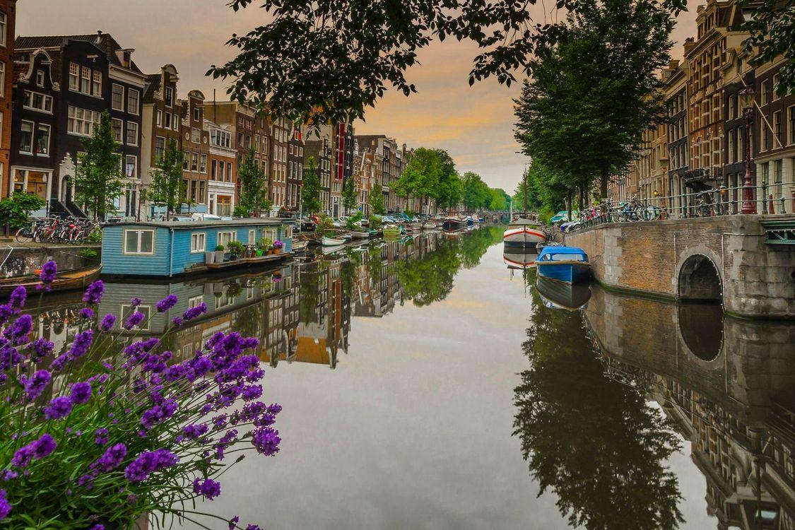 Фото бесплатно Amsterdam, Нидерланды, Амстердам, канал, город