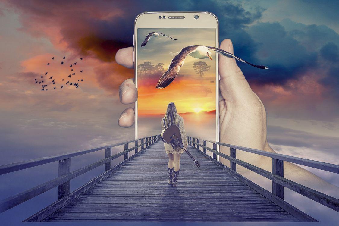 Фото бесплатно мост, девушка с гитарой, стая птиц - на рабочий стол