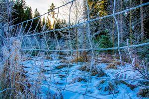 Бесплатные фото зима,лес,деревья,забор,сетка,иней,снег