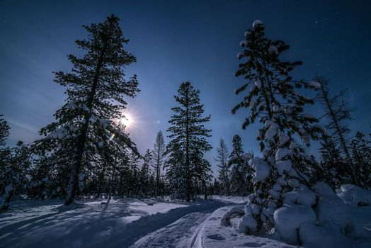 Фото бесплатно следы, Луна, снег