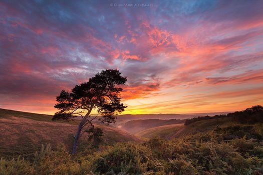 Photo free Dartmoor National Park, sunset, hills