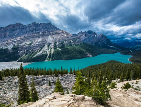 Photo free mountains, Banff National Park, forest