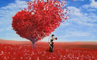 Фото бесплатно поле, дерево, сердце