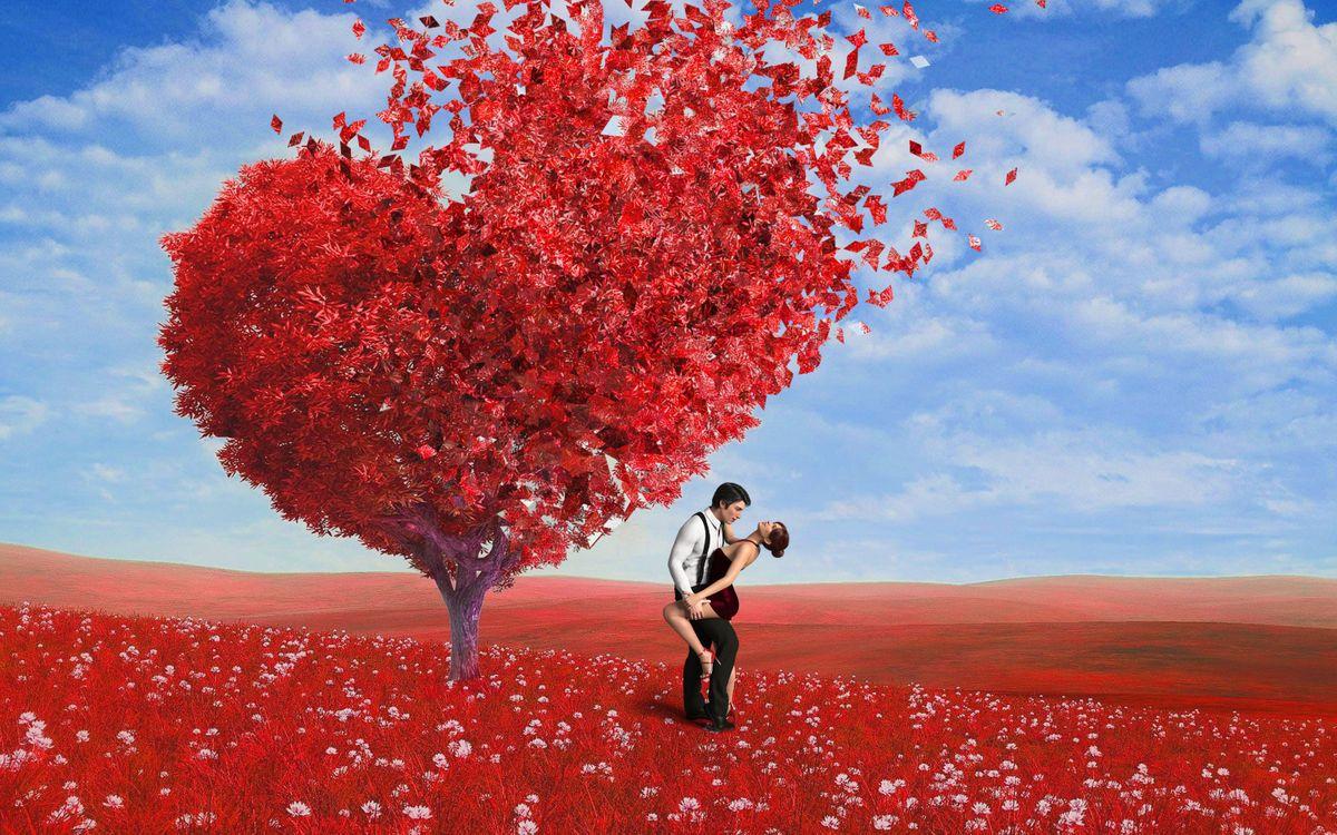Фото бесплатно поле, дерево, сердце - на рабочий стол