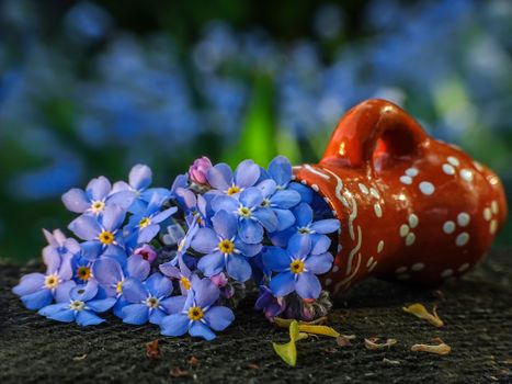 Бесплатные фото ваза,цветок,цветы,цветочный,цветочная композиция,флора,красивые,красивый,цвет,оригинальный,красочный