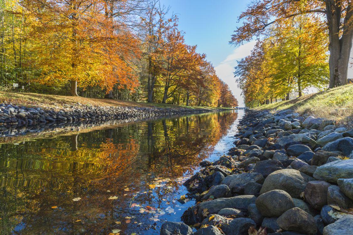 Фото бесплатно вода, осень, деревья - на рабочий стол