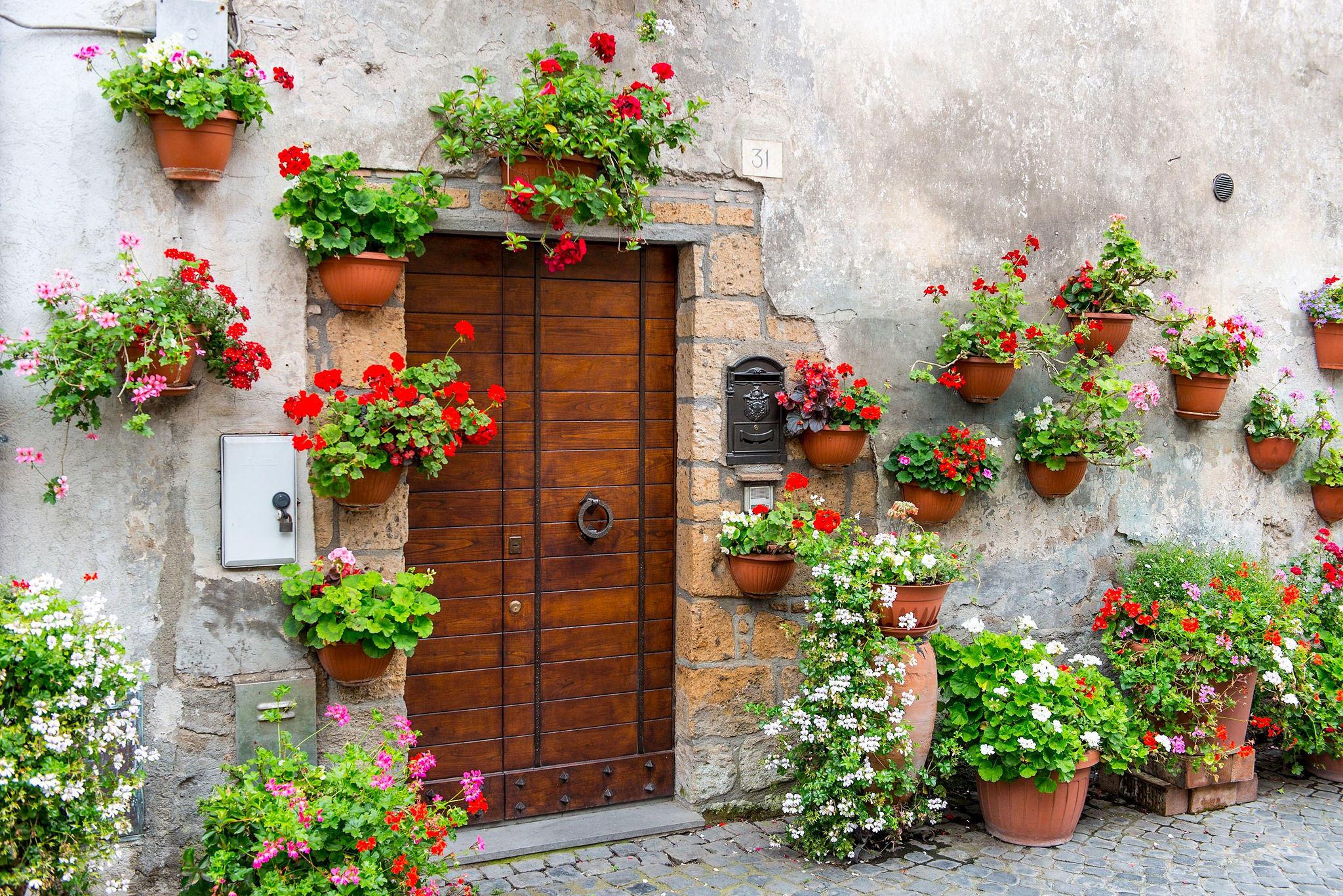 Обои стена, дверь, здание, цветы
