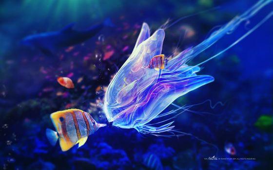 Фото бесплатно медуза, рыбки, красочный фон