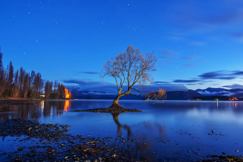 Уанака, Озеро Ванака, Новая Зеландия, закат, деревья, пейзаж