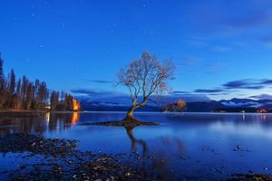Заставки Уанака,Озеро Ванака,Новая Зеландия,закат,деревья,пейзаж