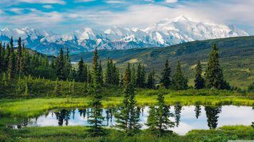 Фото бесплатно Аляска, природа, пейзаж, горы, вода, отражение, дневной свет, деревья
