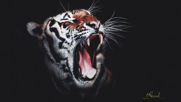 Фото бесплатно голова тигра, рев, зубы